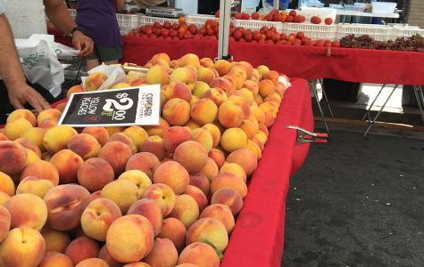 Brentwood Farmers market rolls on