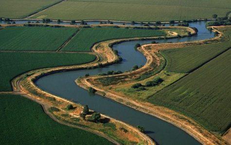 Delta Water Safety
