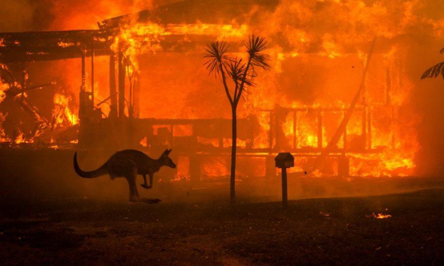 Australia+Fires